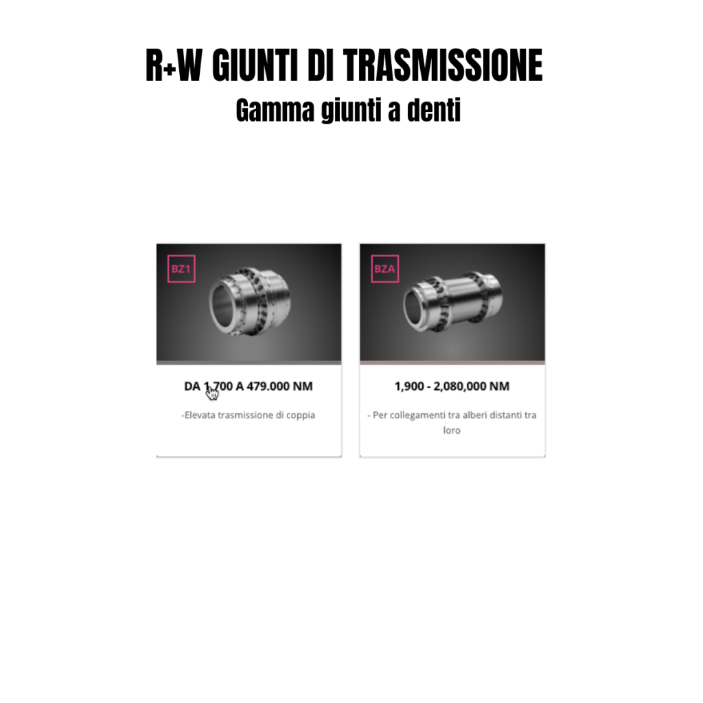 GIUNTI DI TRASMISSIONE (7)
